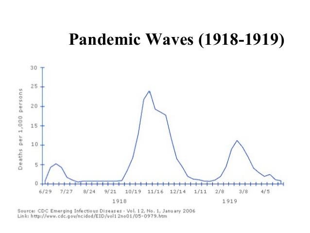 pandemic waves